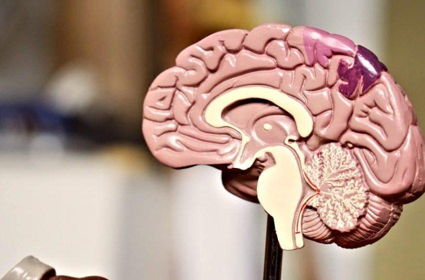 Objetivos de la evaluación neuropsicológica extensible a las adicciones