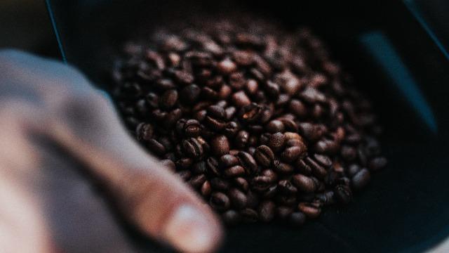 El consumo de cafeína durante el embarazo está vinculado a cambios cerebrales en el útero